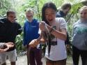Amazon Jungle Fun