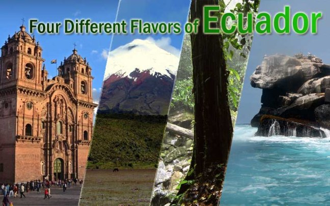 4-different-flavors-of-ecuador