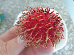Fresh Lychee Nuts Up Closer