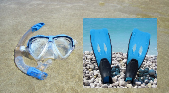 equipment-needed-for-snorkeling-in-galapagos-islands