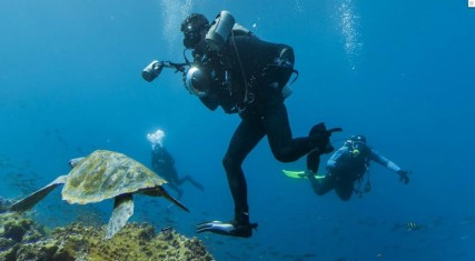 diving-at-galapagos-islands