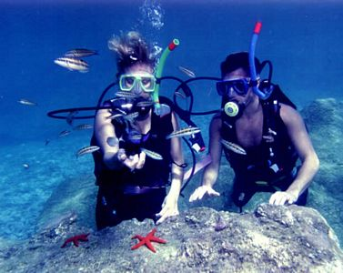 pictures-taken-while-scuba-diving