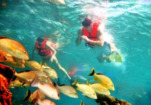 snorkeling-adventure-big-2